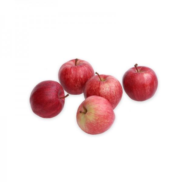 BIO Mini Äpfel rot/grün 50/60m m 60-80gStk 5Kg aus DE