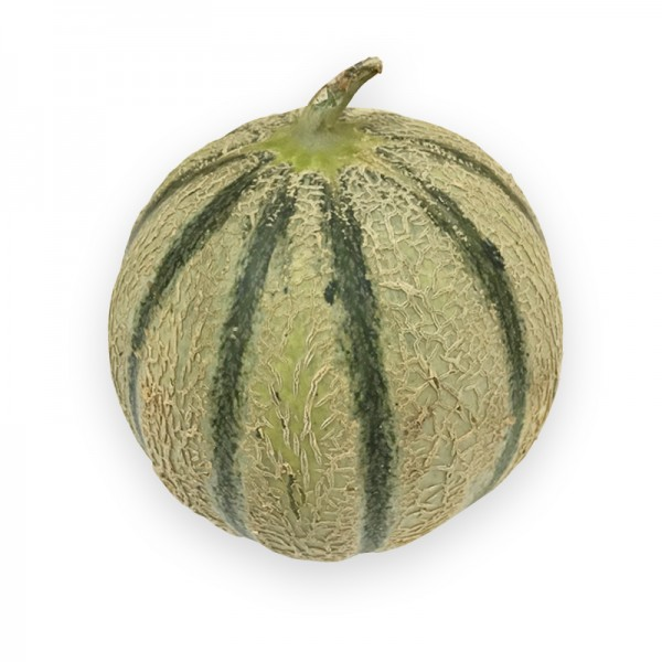 Charentais Melone, 12 Stk, Marokko