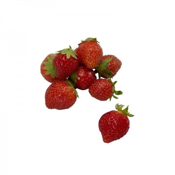 Erdbeeren 'Mara des Bois'
