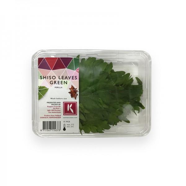 Shiso Blätter