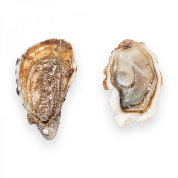 Gillardeau Austern, Nr. 2