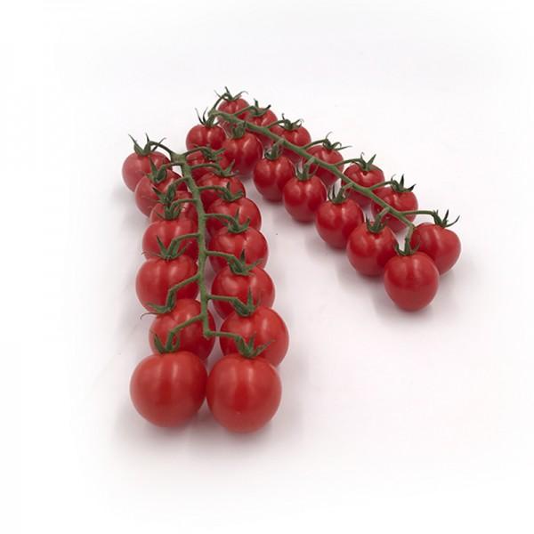 "Cherry Rispentomaten ""Divino Imperial"""