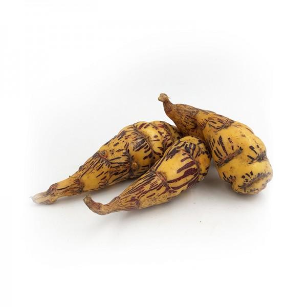 """Zimtkartoffel """"Mashua Cubio"""""""