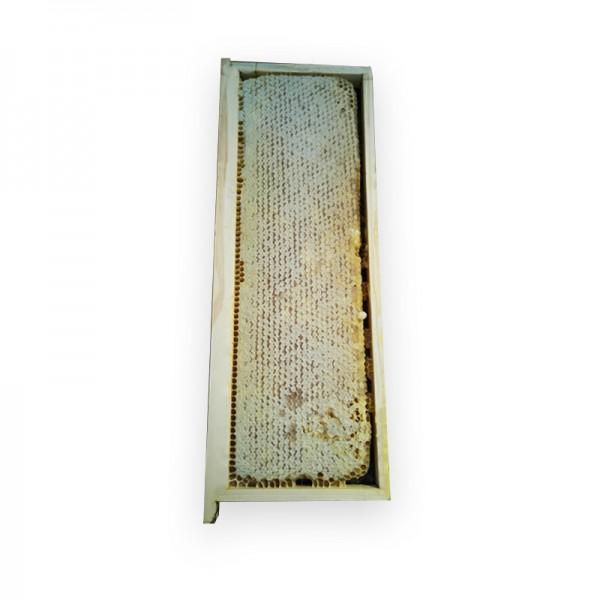 Bienenwabe mit Honig im Holzrahmen