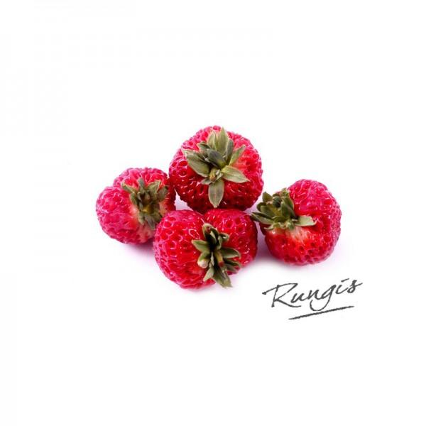 """Himbeererdbeeren """"Strasberry"""", Niederlande"""