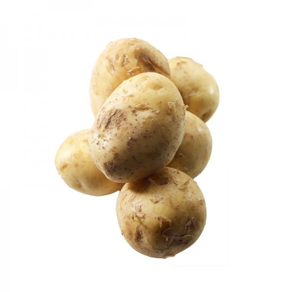 "Kartoffel ""Noirmoutier"" Grenaille"