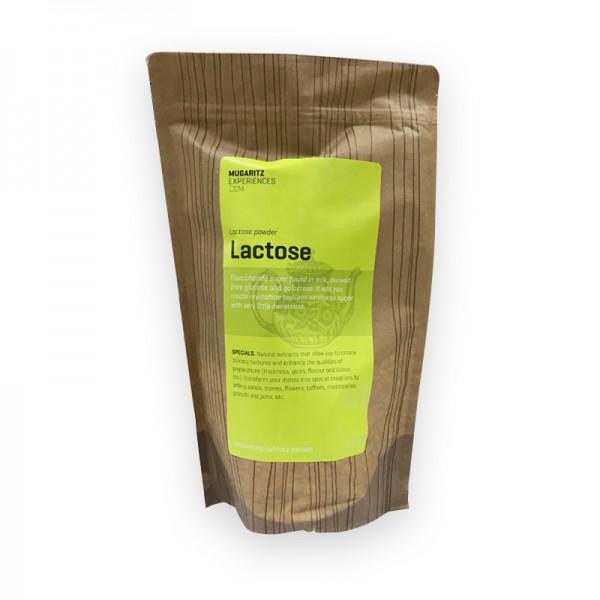 Lactose Mugaritz 750g Milchzucker
