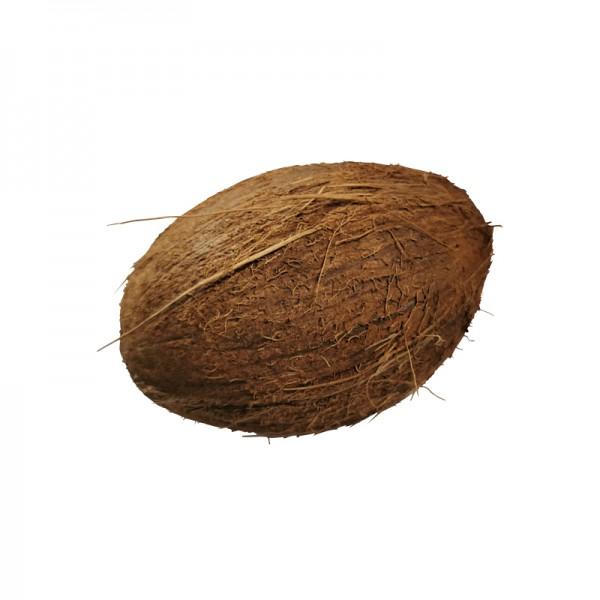 Kokosnuss mit brauner Haut