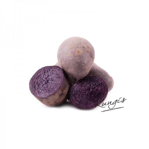 """Kartoffel """"Violet Queen"""", festkochend"""