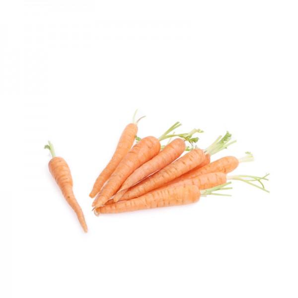 Mini-Karotten mit 3cm Grün