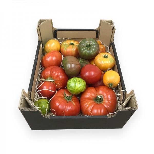 Bio Tomatenmix große Sorten