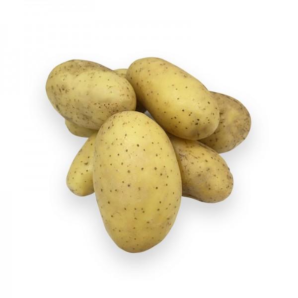 """Kartoffel """"Charlotte"""", festkochend"""