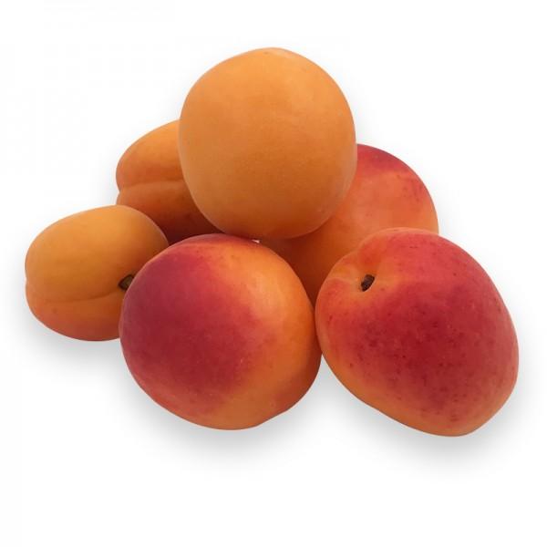 Aprikosen, Klasse AAA