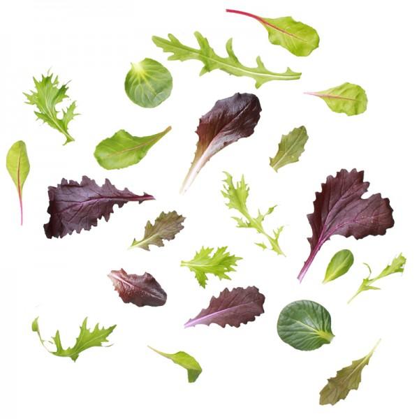 Baby Leaf, Keltenhof