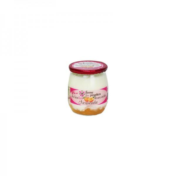 Joghurt auf Aprikose