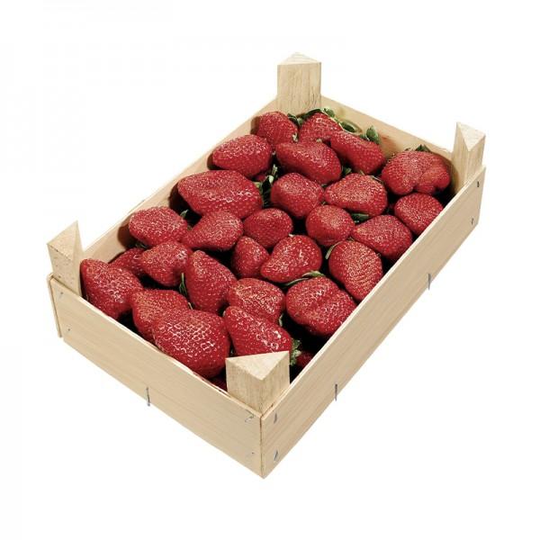 Erdbeeren gelegt, Spanien